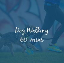 dog walking milton keynes 60 minutes