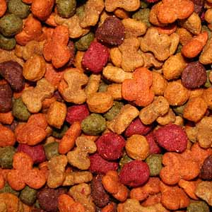 kibble dog food