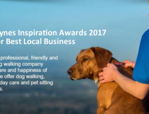 Best Local Business Award 2017 Winner